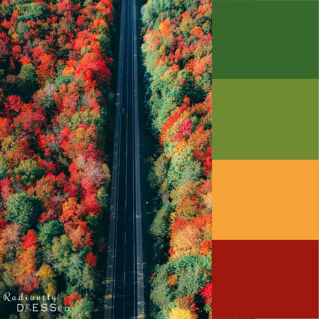 Changing Fall Colors